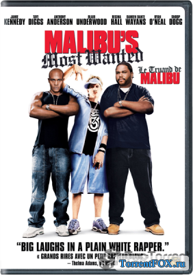������������� � ������ / Malibu's Most Wanted (2003)