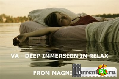 VA - Deep Immersion In Relax (2013) MP3